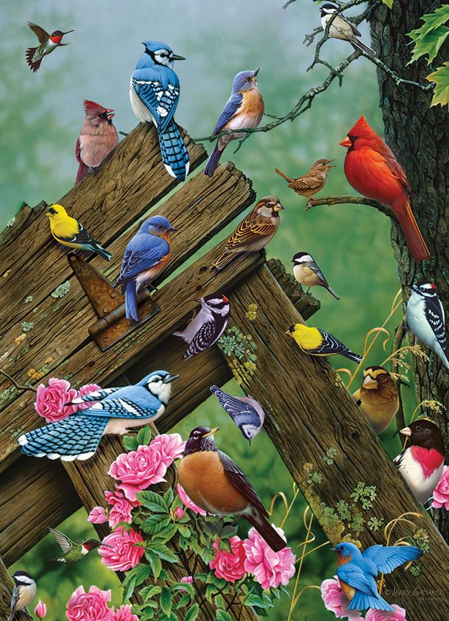 Puzzle Cobble Hill Pájaros del Bolque de 1000 Piezas