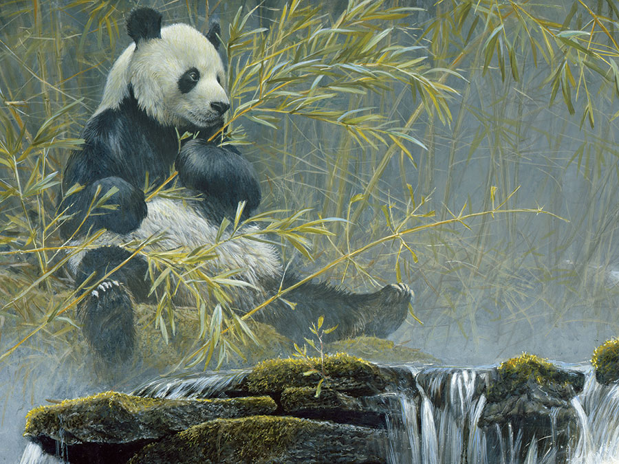Puzzle Cobble Hill Panda Gigante de 500 Piezas