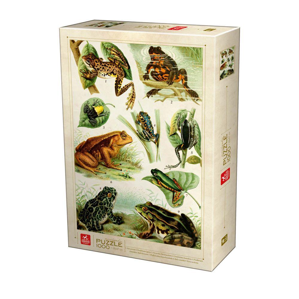 Puzzle Deico Enciclopedia de Ranas de 1000 Piezas
