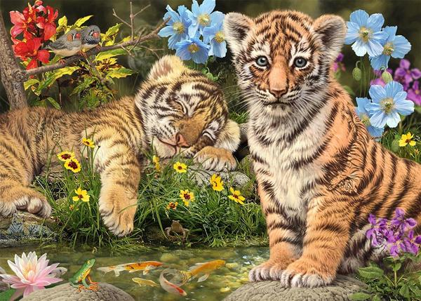 Puzzle Dino Cachorros de Tigre de 1000 Piezas