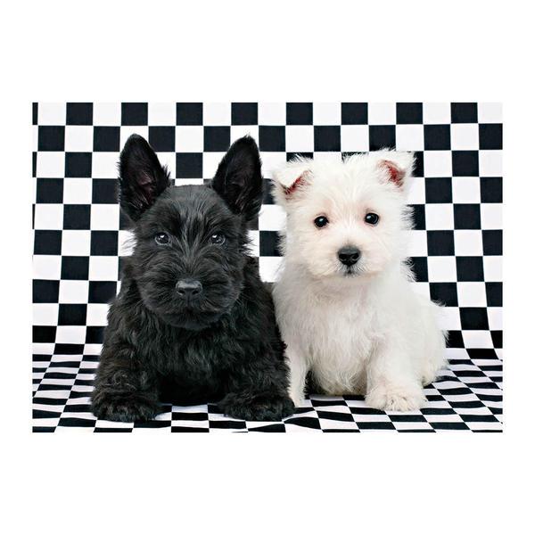 Puzzle Dino Pareja de Cachorros Terrier de 500 Piezas