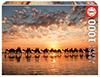 Puzzle Educa Atardecer Dorado en Cable Beach, Australia 1000 Pie