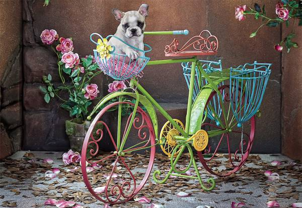 Puzzle Educa Bulldog Francés de Paseo de 500 Piezas