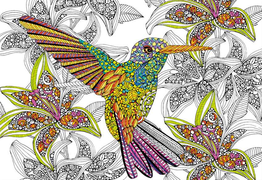 Puzzle Educa Colibrí coloréame de 300 Piezas
