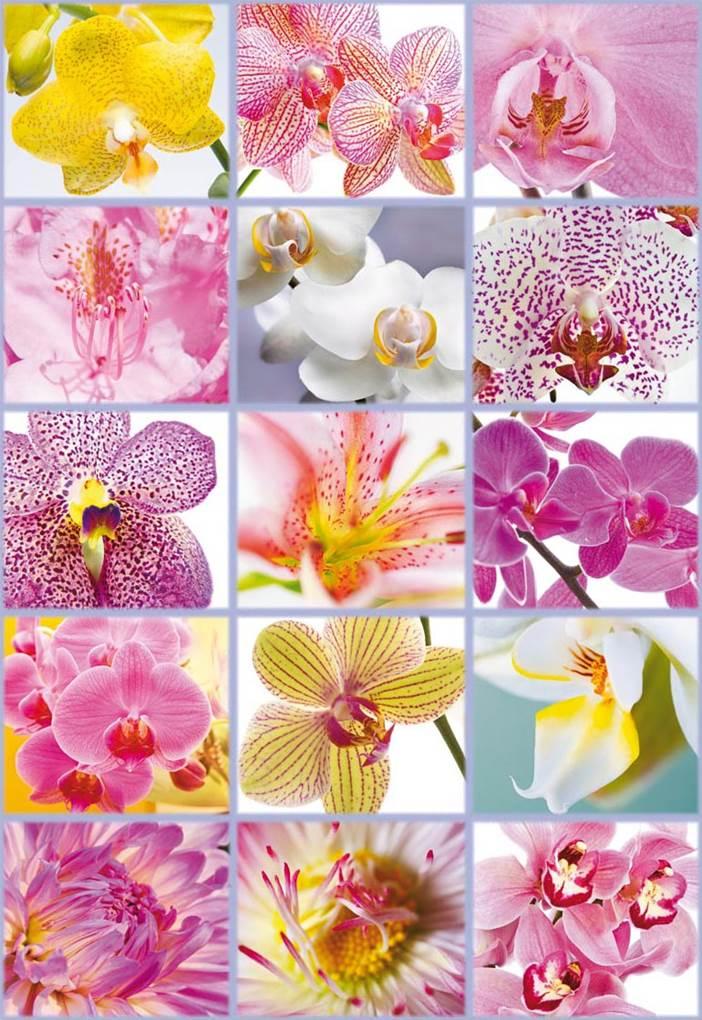 Puzzle Educa Collage de Flores de 1500 Piezas