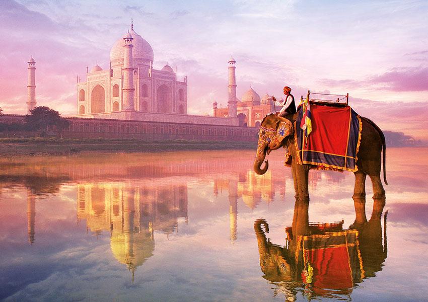 Puzzle Educa Elefante en el Taj Mahal 1000 Piezas