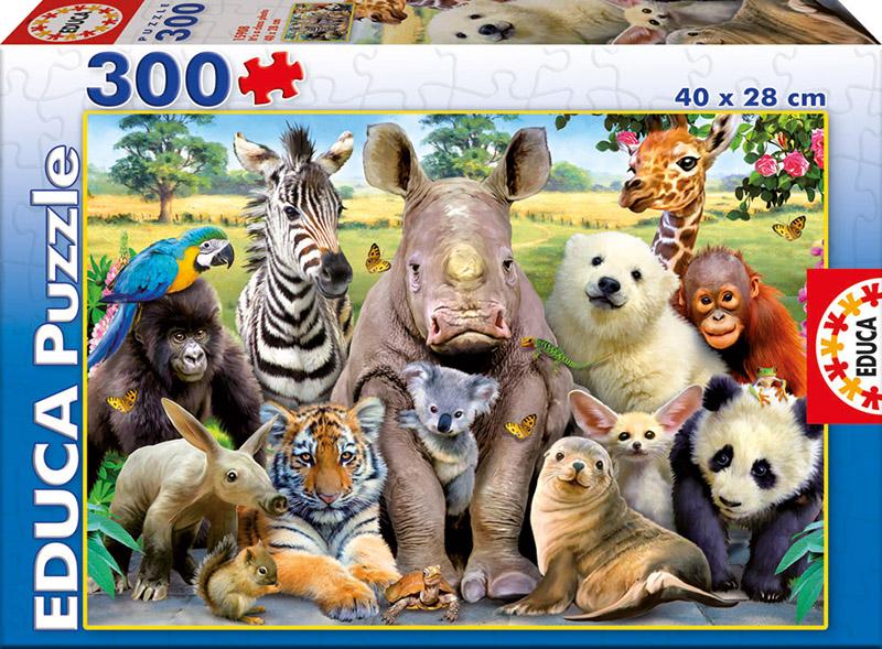 Puzzle Educa Foto de Clase de 300 Piezas