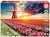 Puzzle Educa Paisaje de Tulipanes de 1500 Piezas
