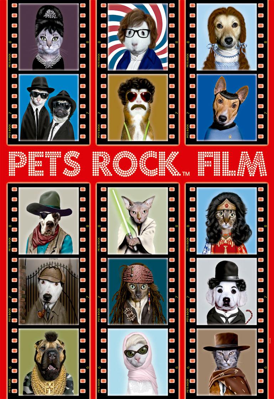 Puzzle Educa Pets Rock Film de 500 Piezas
