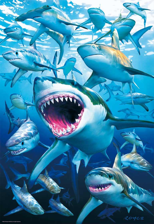 Puzzle Educa Tiburones de 500 Piezas