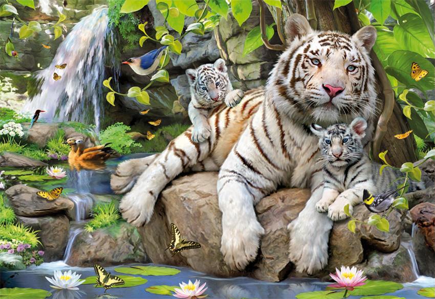 Puzzle Educa Tigres Blancos de Bengala de 1000 Piezas