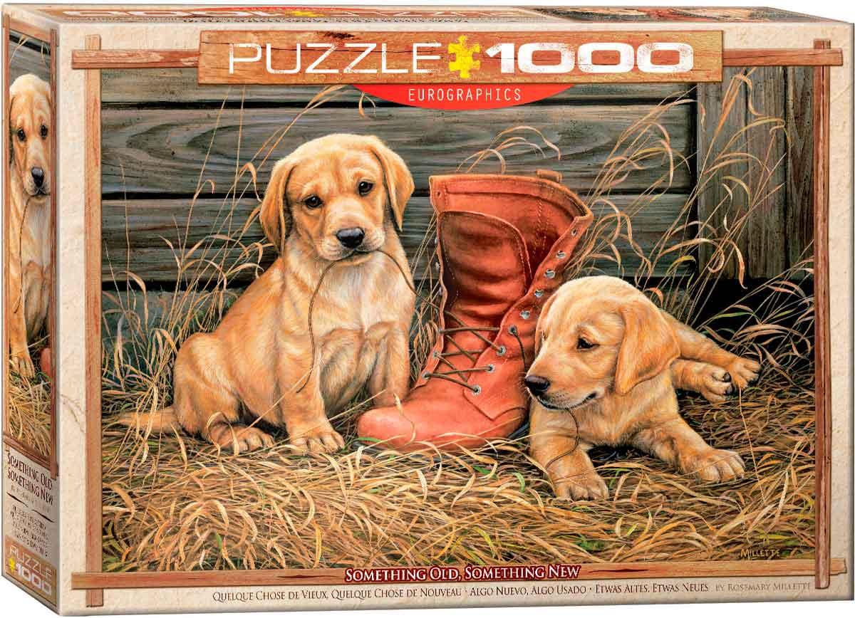 Puzzle Eurographics Algo Nuevo, Algo Usado de 1000 Piezas