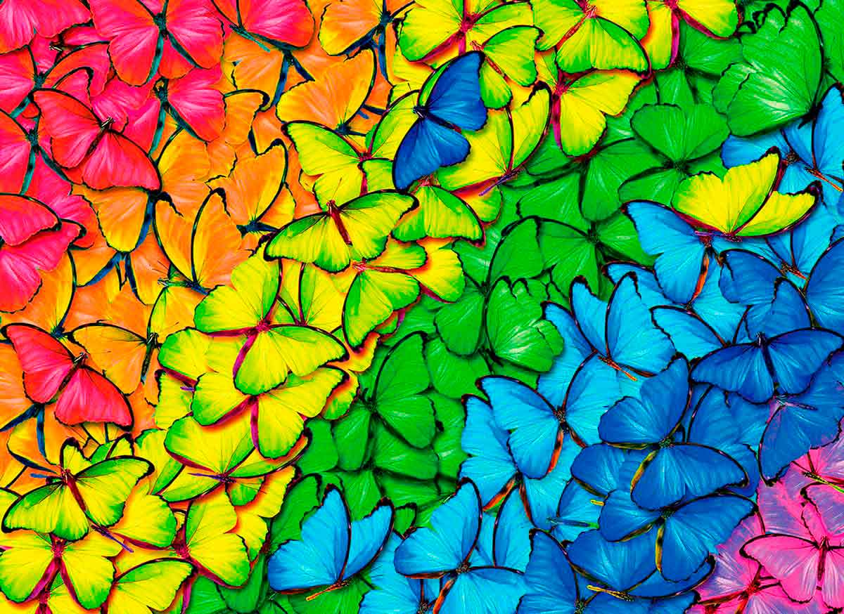 Puzzle Eurographics Arcoíris de Mariposas, Lata de 1000 Pzs