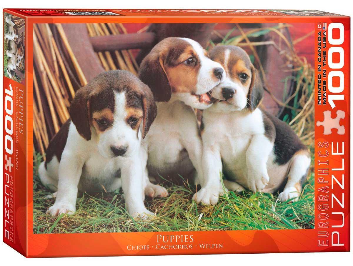 Puzzle Eurographics Cachorros de 1000 Piezas
