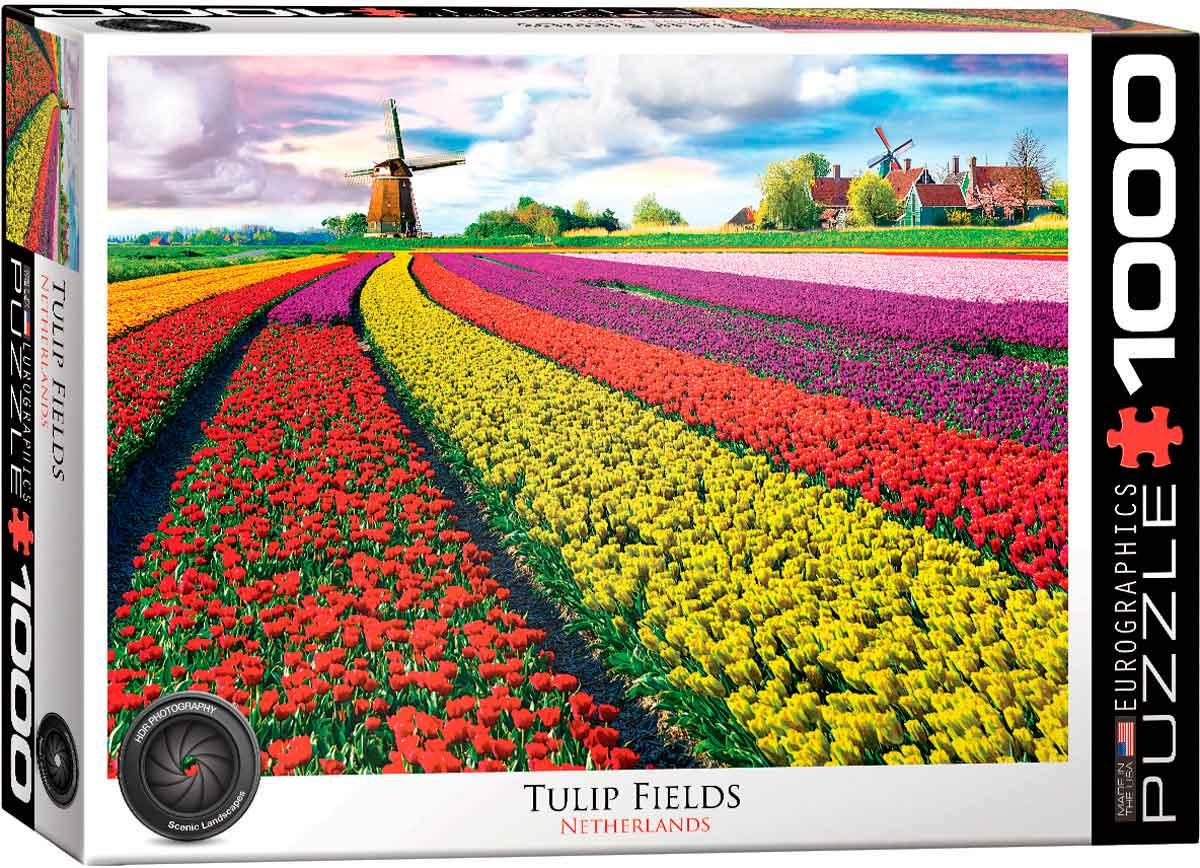 Puzzle Eurographics Campo de Tulipanes, Holanda de 1000 Pzs