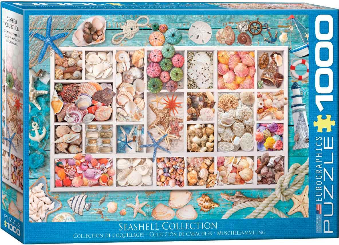 Puzzle Eurographics Colección de Conchas de 1000 Piezas