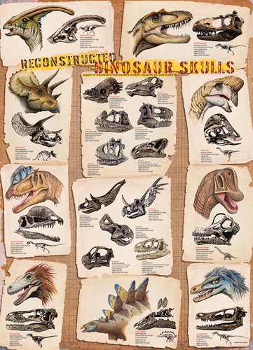 Puzzle Eurographics Cráneos de Dinosaurios Reconstruidos de 1000