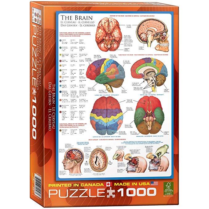 Puzzle Eurographics El Cerebro de 1000 Piezas