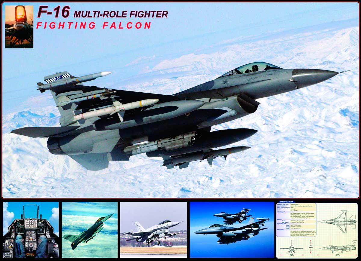 Puzzle Eurographics Falcon F-16 de 1000 Piezas