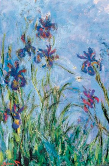 Puzzle Eurographics Flores de Iris de 1000 Piez