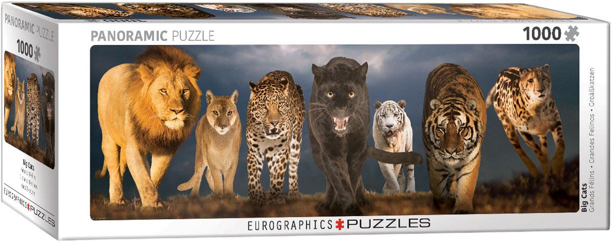Puzzle Eurographics Grandes Felinos de 1000 Piezas