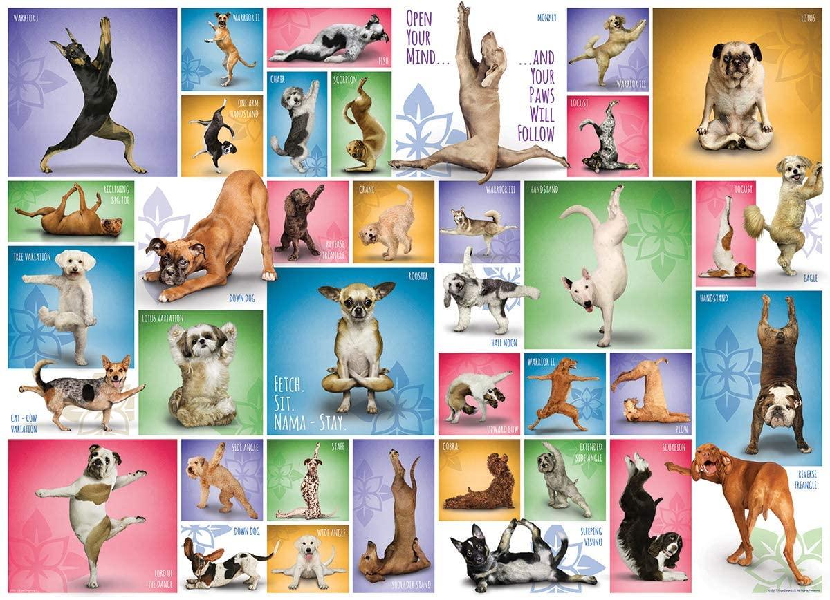 Puzzle Eurographics Perros de Yoga de 1000 Piezas