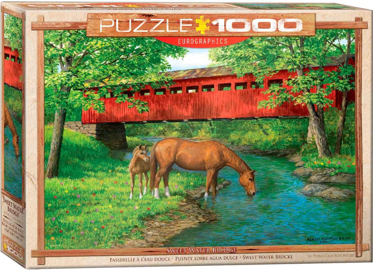 Puzzle Eurographics Puente sobre Agua Dulce de 1000 Piezas