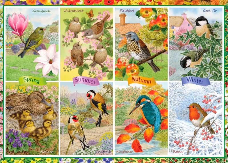 Puzzle Falcon Aves de Jardín Estacionales de 1000 Piezas