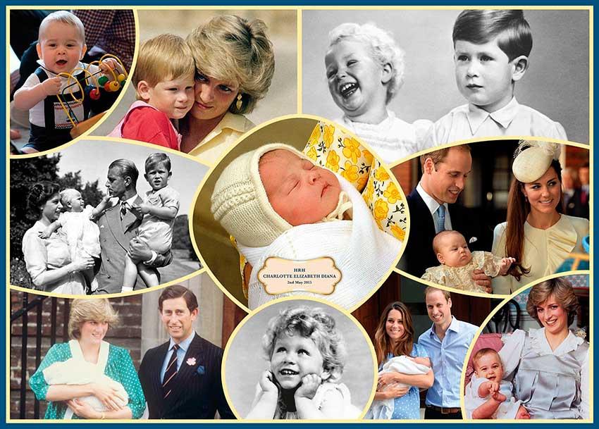 Puzzle Gibsons Bebes de la Realeza Británica de 1000 Piezas