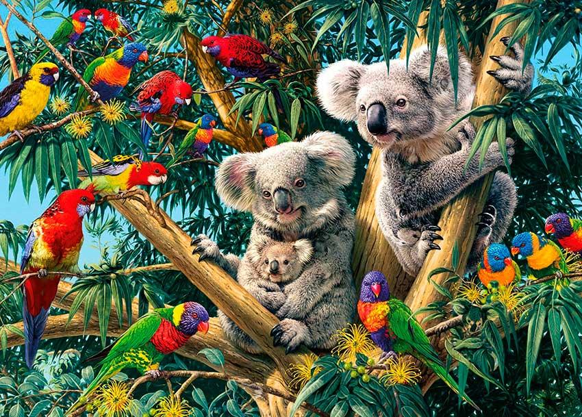 Puzzle Gibsons Familia de Koalas de 1000 Piezas