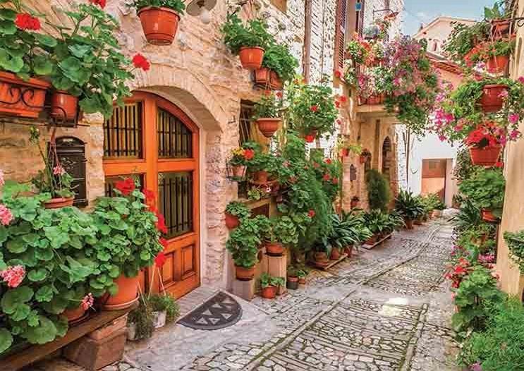 Puzzle Gold Calle de la Toscana, Italia de 1000 Piezas