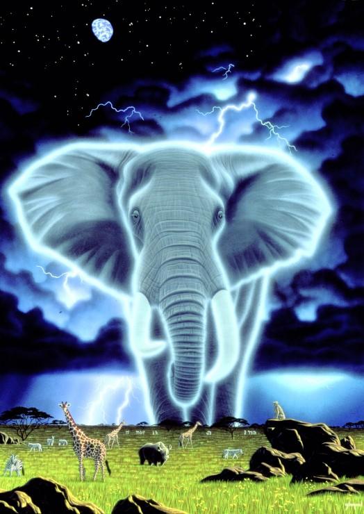 Puzzle Grafika Espíritu de África de 1000 Piezas