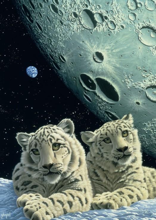 Puzzle Grafika Guarida del Leopardo de las Nieves de 1000 Piezas
