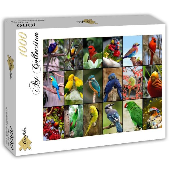 Puzzle Grafika Los Pájaros más Bonitos del Mundo 1000 Piezas