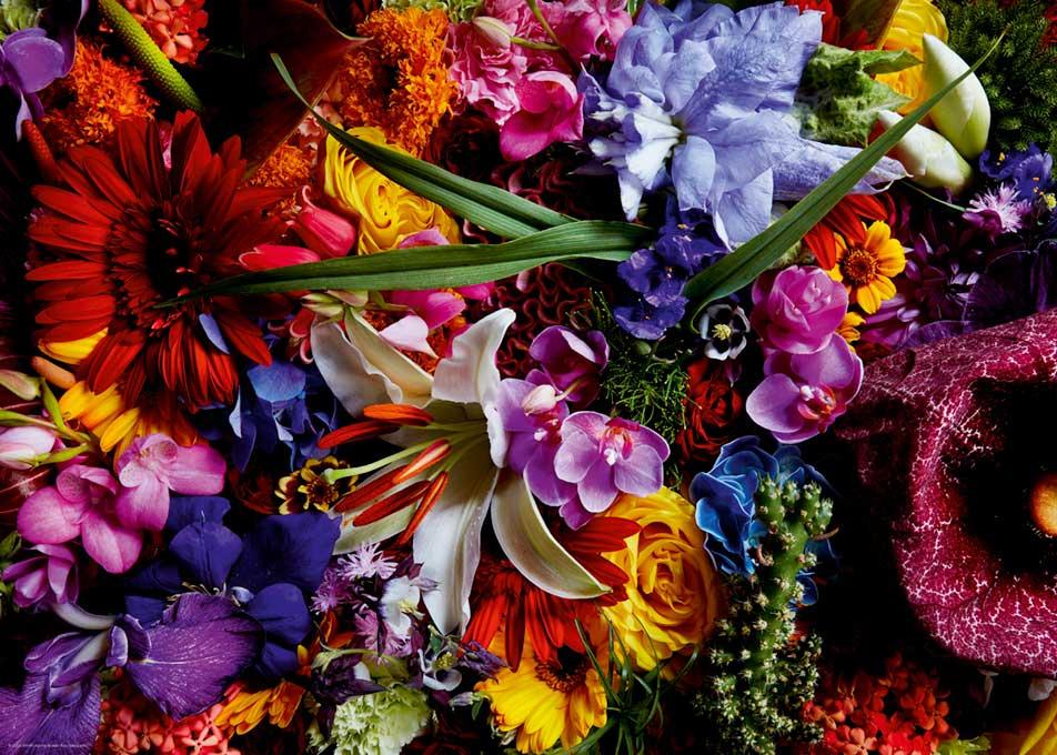 Puzzle Heye Composicion Floral I de 1000 Piezas