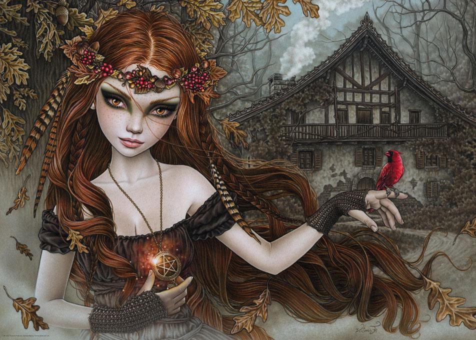 Puzzle Heye Redbird, Pájaro Rojo de 1000 Piezas