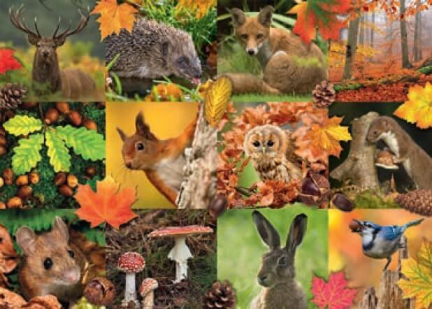 Puzzle Jumbo Animales de Otoño de 1000 Piezas