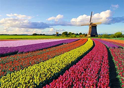 Puzzle Jumbo Campo de Tulipanes 1000 Piezas