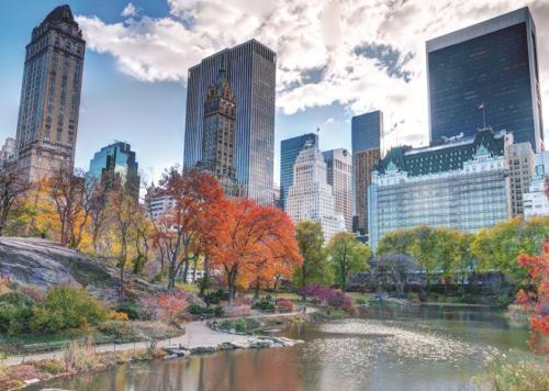Puzzle Jumbo Central Park, Nueva York de 1000 Piezas
