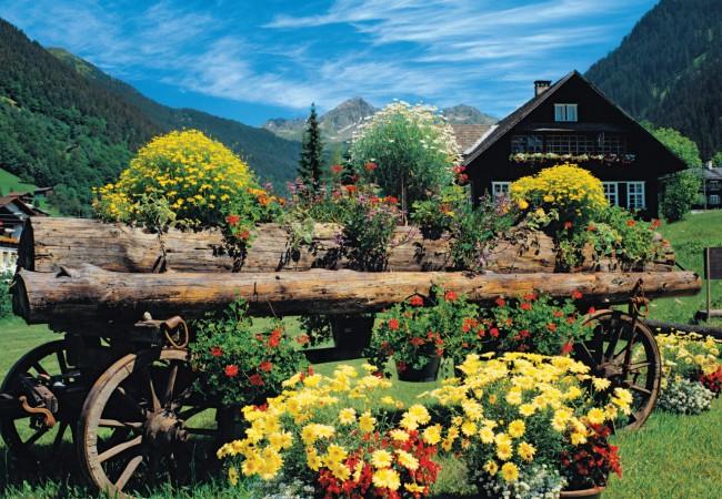 Puzzle Jumbo Flores Alpinas de 1000 Piezas