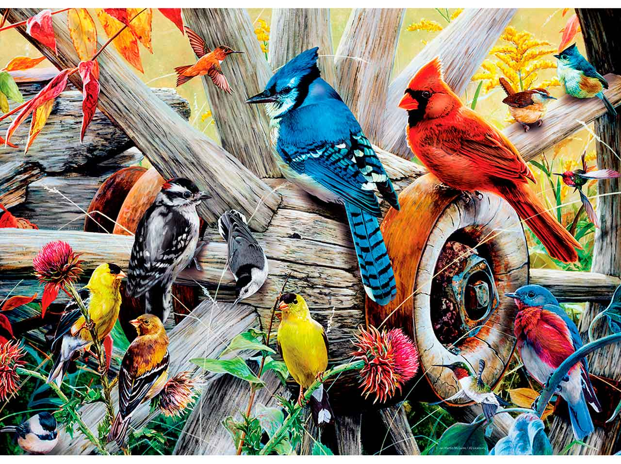 Puzzle MasterPieces Aves del Patio Trasero de 1000 Piezas
