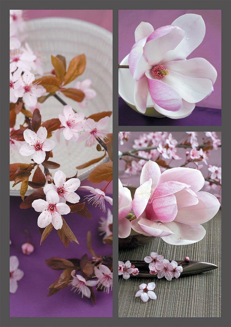 Puzzle Nathan Primavera Japonesa de 1500 Piezas