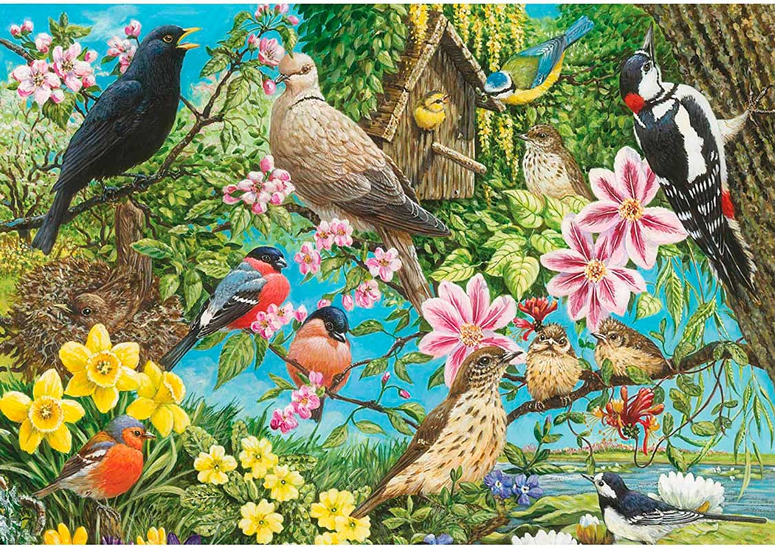 Puzzle Otter House Aves, Lo Mejor de la Naturaleza de 500 Piezas