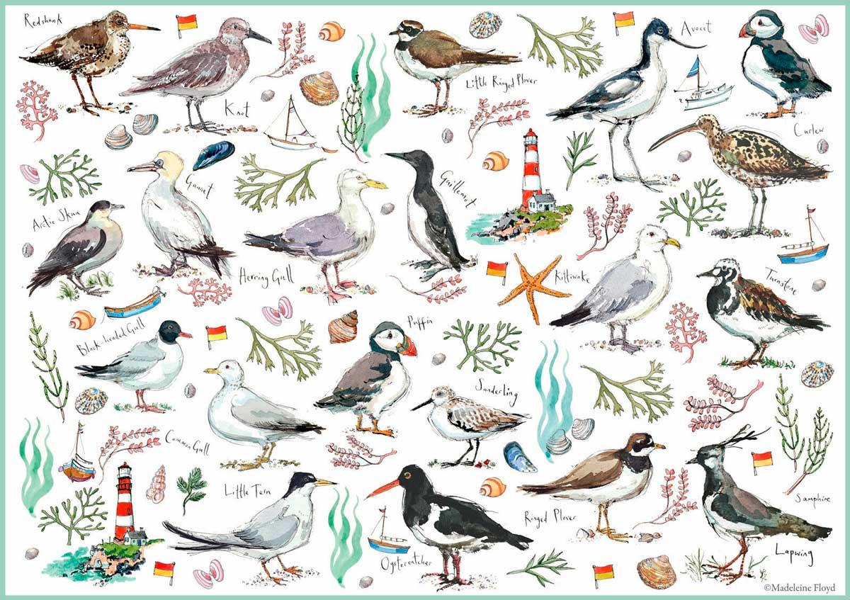 Puzzle Otter House Aves Marinas de 500 Piezas