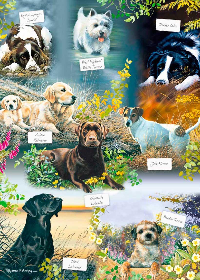 Puzzle Otter House El Mejor Amigo del Hombre de 1000 Piezas