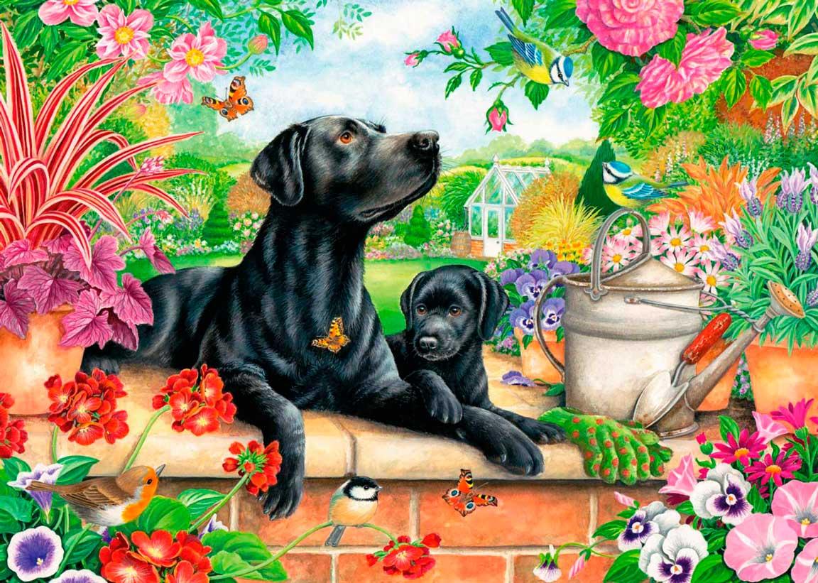 Puzzle Otter House Labrador Negro y Cachorro de 1000 Piezas