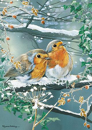 Puzzle Otter House Pareja de Pájaros en la Nieve de 1000 Piezas