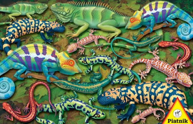 Puzzle Piatnik Salamandras de 1000 Piezas