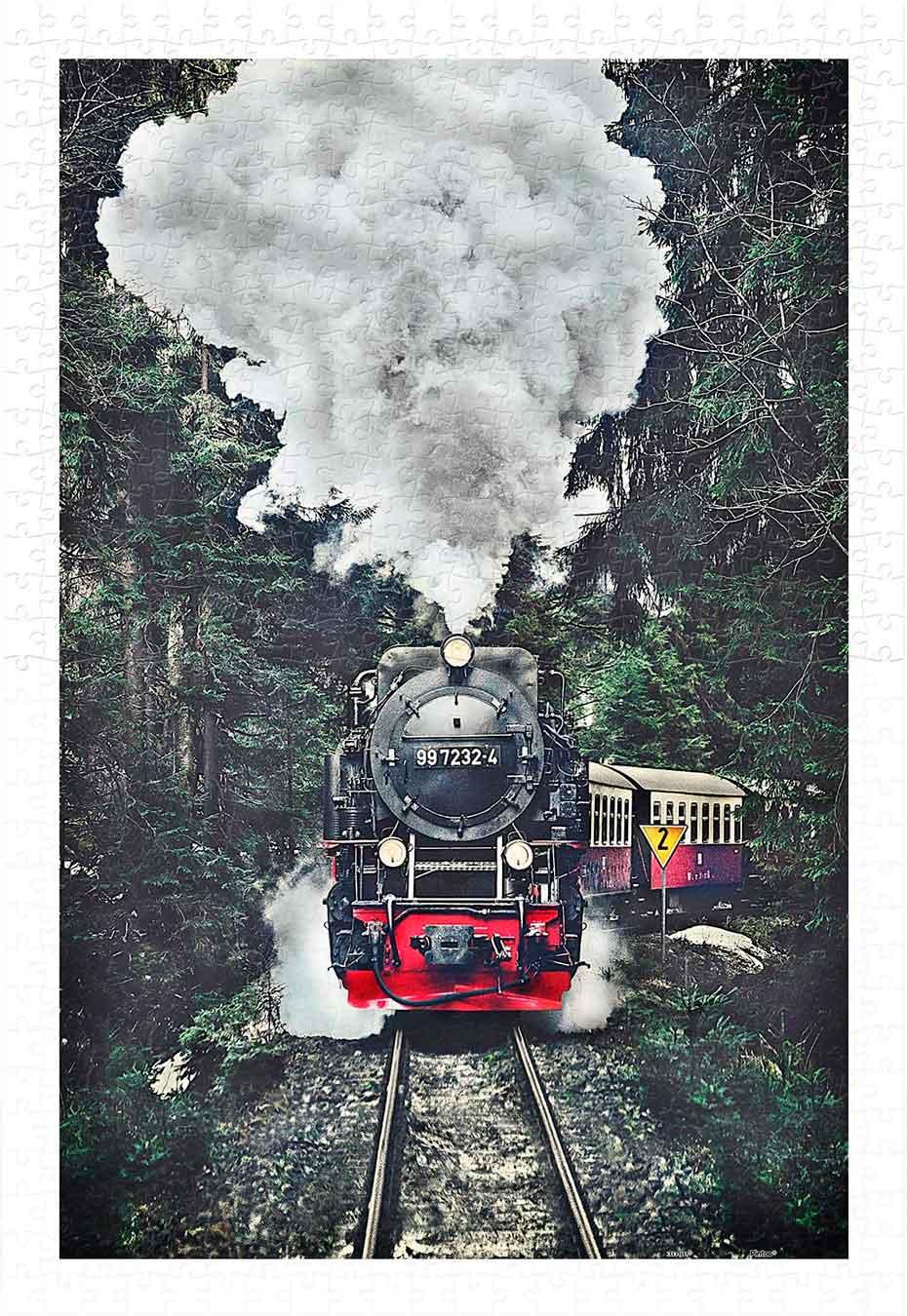 Puzzle Pintoo El Tren de Vapor, Suiza de 600 Piezas