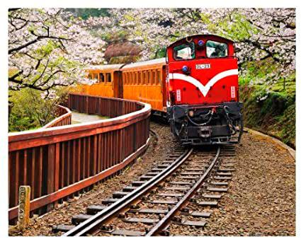 Puzzle Pintoo Tren Forestal en Parque Nacional Alishan de 500 Pz